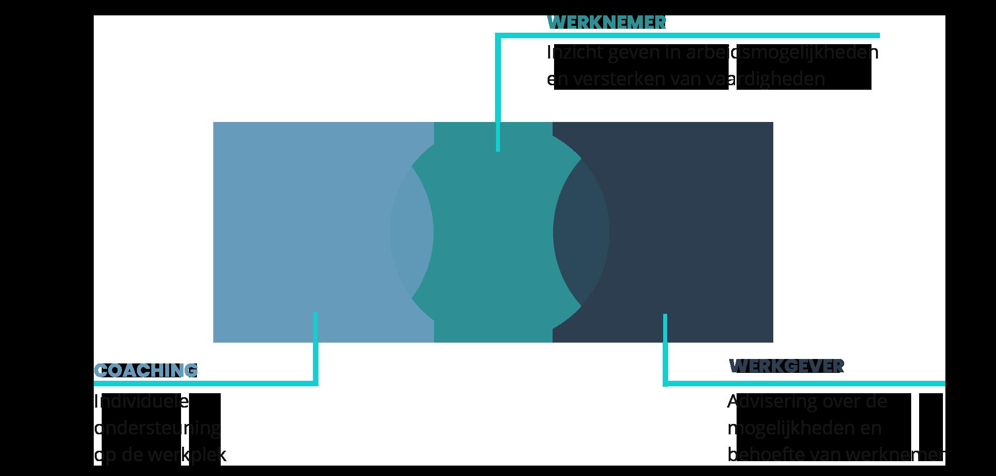 Schematisch weergave traject Jobcoaching. met 3 bollen overloppend Coaching - Werknemer - Werkgever